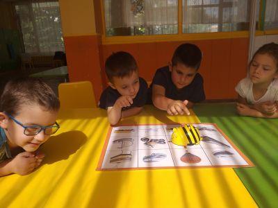 Снимки на децата от група №9 - ДГ №8 Слънце - Търговище